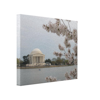 Cherry Blossoms in DC Canvas
