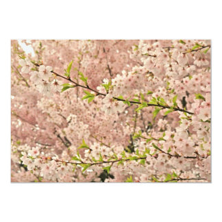 """Cherry Blossoms in Spring 5"""" X 7"""" Invitation Card"""