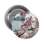 Cherry Blossoms in Washington DC 2 Inch Round Button