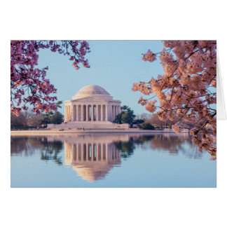 Cherry Blossoms in Washington DC Stationery Note Card