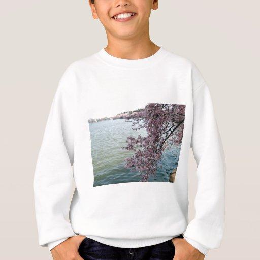 Cherry Blossoms in Washington DC Sweatshirt