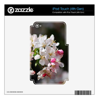 Cherry blossoms iPod touch 4G decals