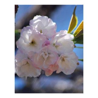 Cherry blossoms letterhead