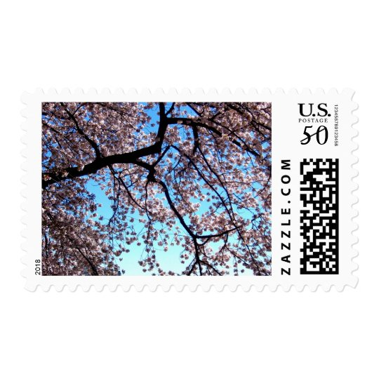Cherry Blossoms * Love Postage