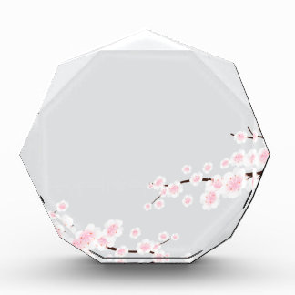 Cherry Blossoms on Silver Background Award