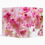Cherry blossoms on spring cherry tree 3 ring binder