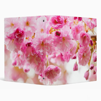 Cherry blossoms on spring cherry tree vinyl binders