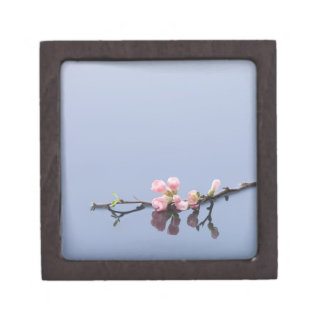 Cherry blossoms on water keepsake box