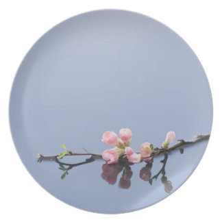 Cherry blossoms on water melamine plate