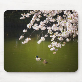 Cherry Blossoms Over A Pond With Ducks, NYC Mouse Pad