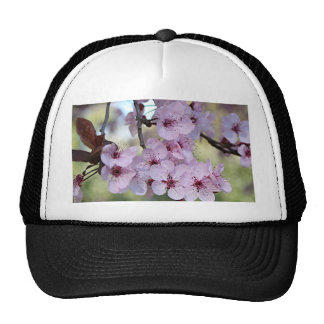 Cherry blossoms pale pink & white trucker hat