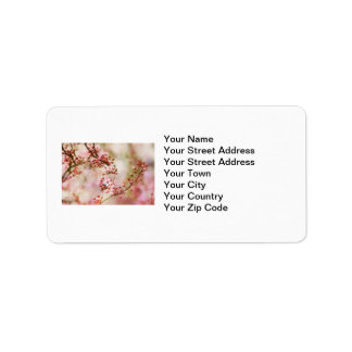 Cherry Blossoms Photo Address Label