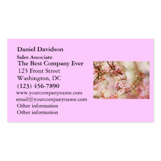 Cherry Blossoms Photo Double-Sided Standard Business Cards (Pack Of 100)