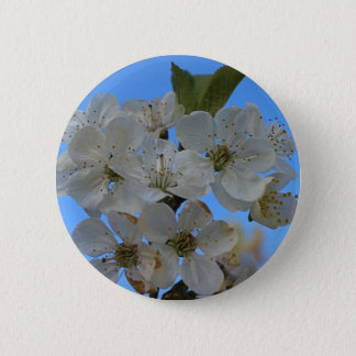 Cherry Blossoms Pinback Button
