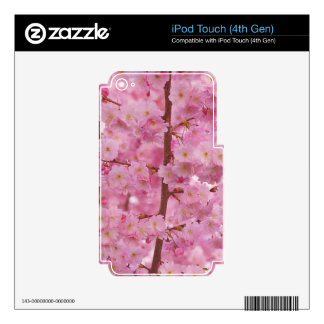 Cherry Blossoms,pink iPod Touch 4G Skins