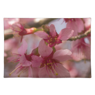 Cherry Blossoms Place Mat