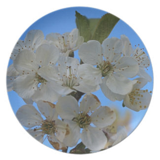 Cherry Blossoms Party Plates