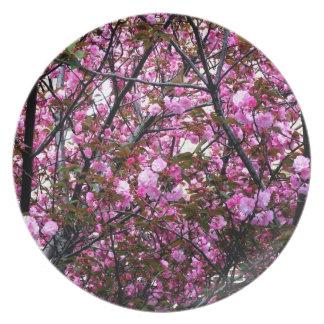 Cherry Blossoms Plates