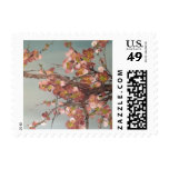 Cherry Blossoms Postage Stamp