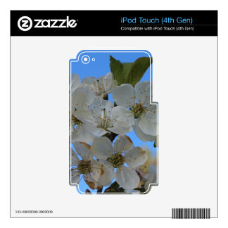 Cherry Blossoms Skin For iPod Touch 4G