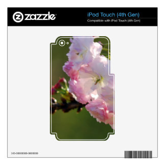 Cherry blossoms iPod touch 4G skin