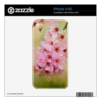 Cherry Blossoms iPhone 4S Skin