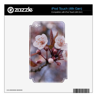 CHERRY BLOSSOMS iPod TOUCH 4G DECAL