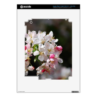 Cherry blossoms skin for iPad 3