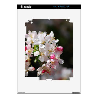 Cherry blossoms skins for the iPad 2