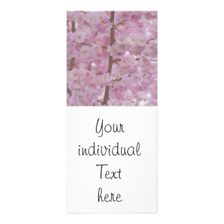 Cherry Blossoms,soft pink Rack Card Template