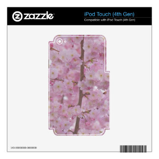 Cherry Blossoms,soft pink iPod Touch 4G Decal