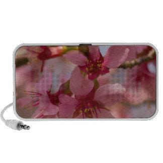Cherry Blossoms Mini Speaker