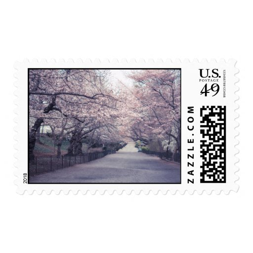 Cherry Blossoms Stamps