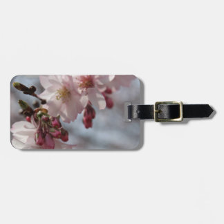 Cherry Blossoms Tag For Bags