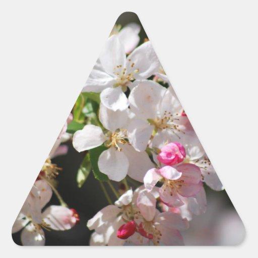 Cherry blossoms triangle sticker