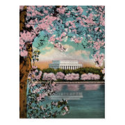 Cherry Blossoms Vintage Postcard