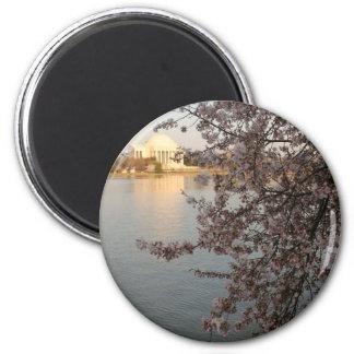 Cherry Blossoms Washington DC 2 Inch Round Magnet