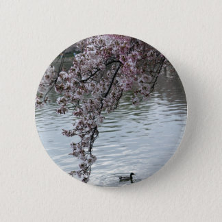 Cherry Blossoms Washington DC Button