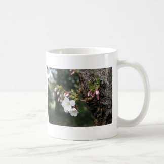 Cherry Blossoms Washington DC Coffee Mug