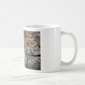 Cherry Blossoms Washington DC Coffee Mug