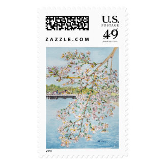 Cherry Blossoms Washington DC Painterly Watercolor Postage