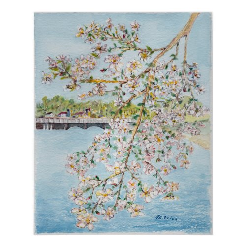 Cherry Blossoms Washington DC Painterly Watercolor Poster