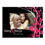 Cherry Blosssom Bella Save the Date Photo Post Card