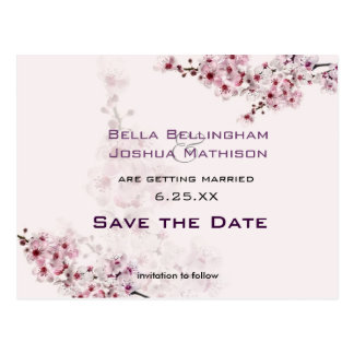 Cherry Branches Save the Date Wedding pos Postcard