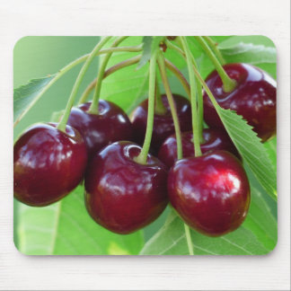 Cherry bunch on tree mouse pad