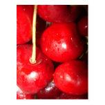 Cherry - Cherries Postcard