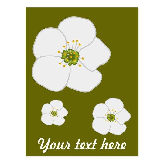 Cherry Flower Postcard