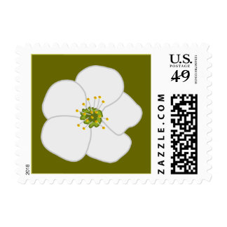 Cherry Flower Stamps