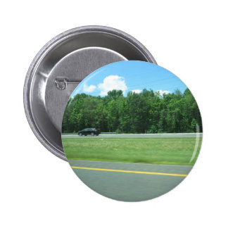 CHERRY HILL NJ JERSEY USA GIFTS NATURE GREEN PINBACK BUTTONS
