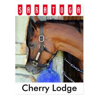 Cherry Lodge Postcard